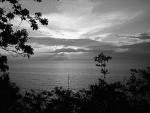Im Sommer 2005 an der Ostsee geknippst ;)